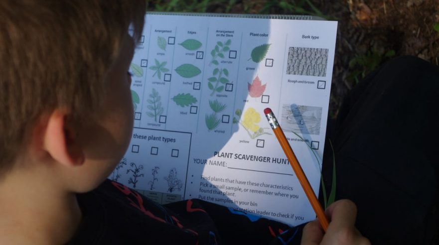 A student searches for various plant traits in the forest